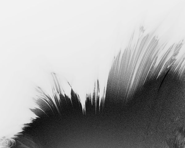 fractal фрактал