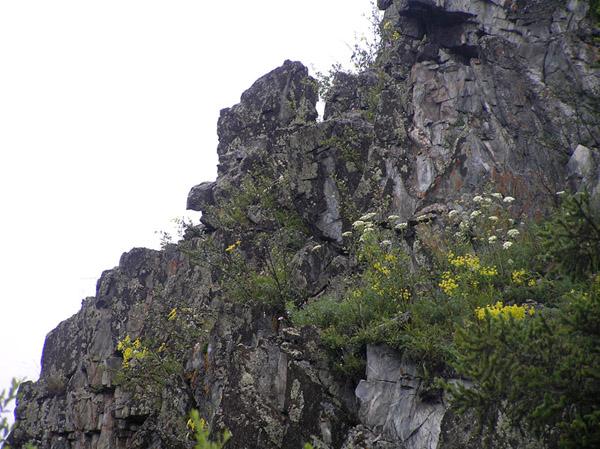 Алтай скала