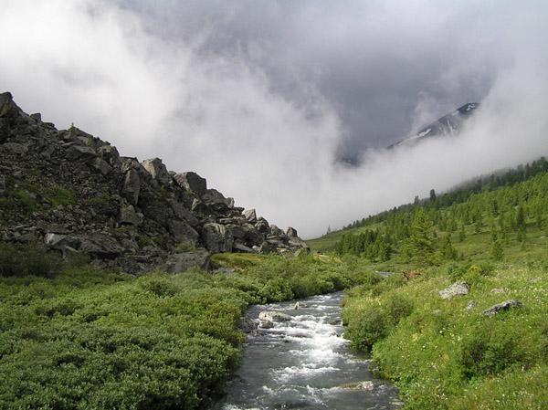 Алтай туман река