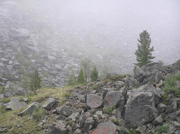 Алтай туман